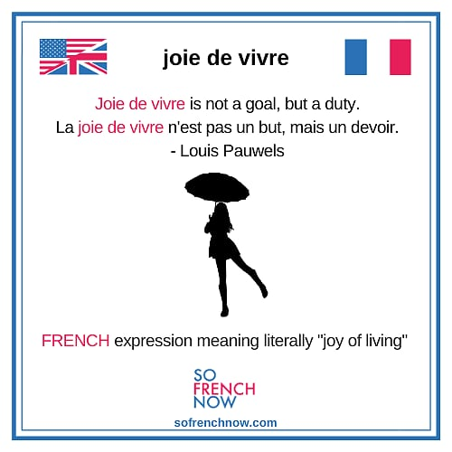 More than 1 Good Reason to Learn French Now